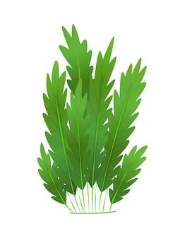 Trawa lub krzewy. zielona realistyczna wiosna trawa.