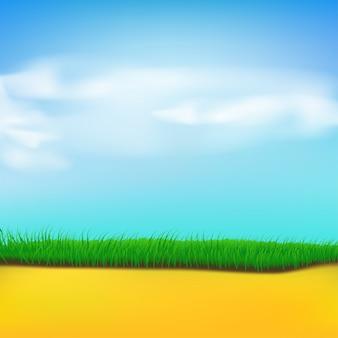 Trawa piasek niebo
