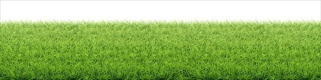 Trawnik z zieloną trawą. granica z pola świeżej trawy.