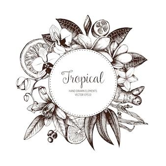 Tropical. ręcznie zarysowane egzotyczne rośliny wieniec vintage.