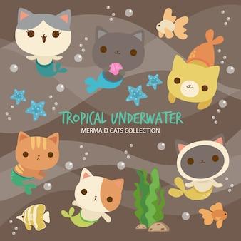 Tropical underwater mermaid cats