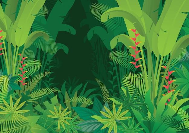 Tropikalna dżungla ciemne tło, las, las deszczowy, rośliny i przyroda
