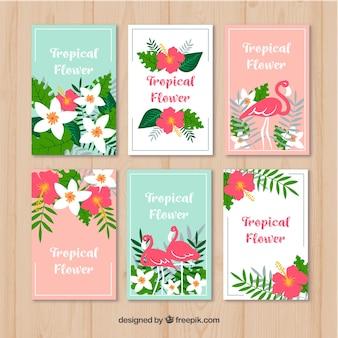 Tropikalna flamingo karty
