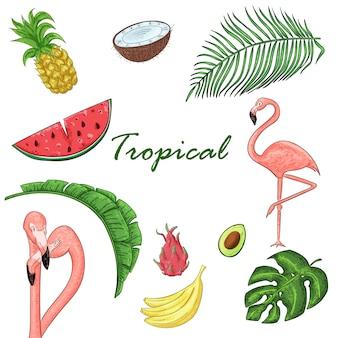 Tropikalna kolekcja na letnie przyjęcie: egzotyczne liście, flamingi i owoce.