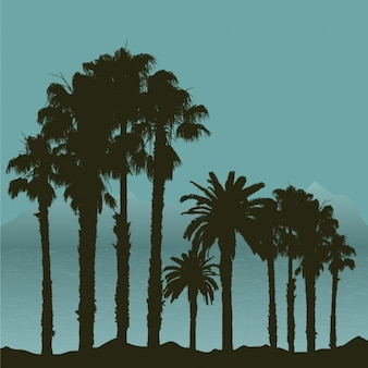 Tropikalna krajobraz sylwetki