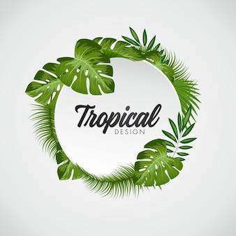 Tropikalna liści tła