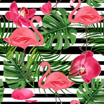 Tropikalne flamingo tło.