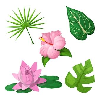 Tropikalne kwiaty i liście do dekoracji.