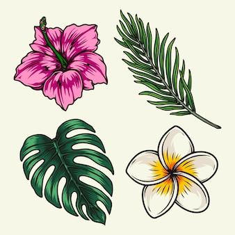 Tropikalne kwiaty i rośliny z palmą hibiskusa plumeria i liśćmi monstera na białym tle