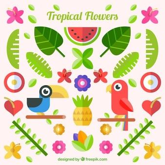 Tropikalne kwiaty w płaskiej konstrukcji