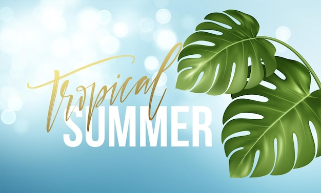 Tropikalne lato napis na tle z realistycznych jasnozielonych liści monstera.