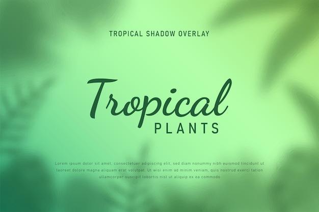 Tropikalne liście cień nakładki tła wektor ilustracja