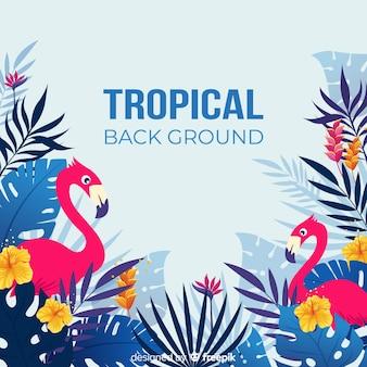 Tropikalne liście i egzotyczne ptaki tło