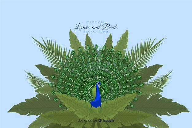 Tropikalne liście i ptaki