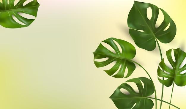 Tropikalne liście na żółtym tle, monstera tropikalnych liści.