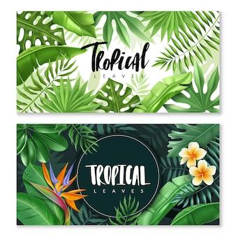Tropikalne liście poziome bannery.