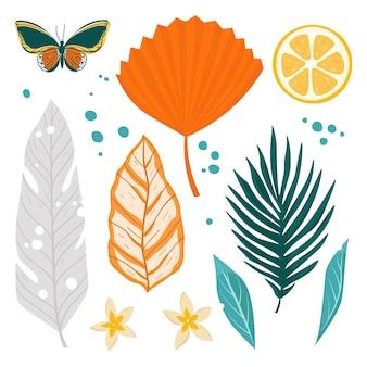 Tropikalne liście zestaw ilustracji