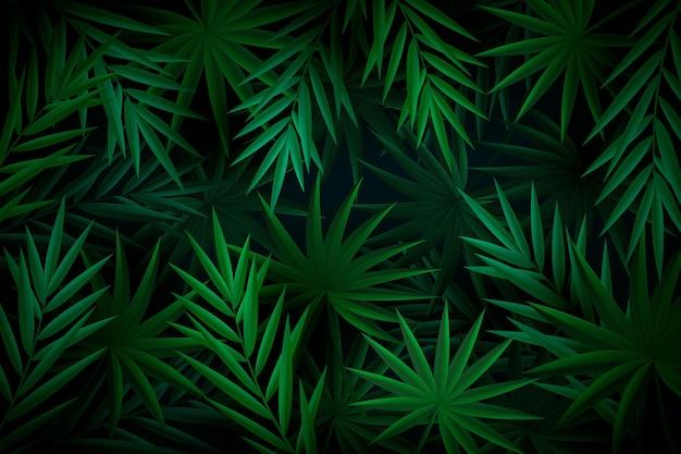 Tropikalne liście zielone tło