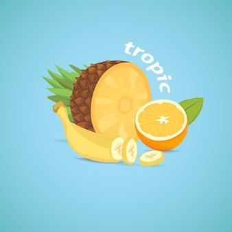 Tropikalne owoce w plasterkach ilustracja na białym tle