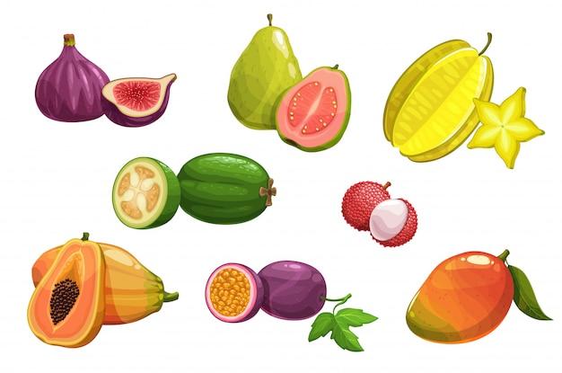 Tropikalne owoce, zestaw ikon na białym tle kreskówka