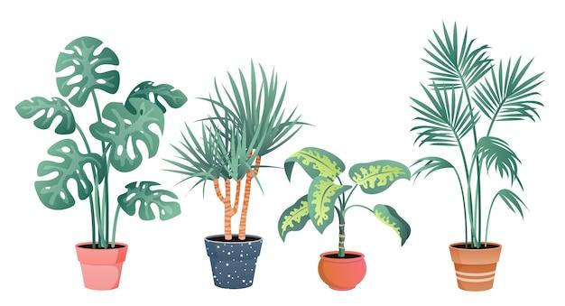 Tropikalne rośliny domowe. kreskówka rośliny doniczkowe w glinianym garnku do dekoracji przydomowego ogrodu