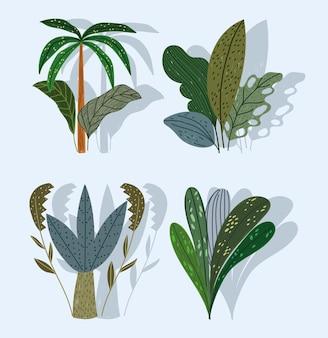 Tropikalne rośliny drzewo deski liści natura kreskówka zestaw ilustracji