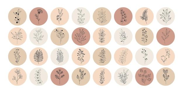 Tropikalne rośliny, liście i gałęzie z kwiatami, zestaw elementów nerd z kółkami w różnych kolorach