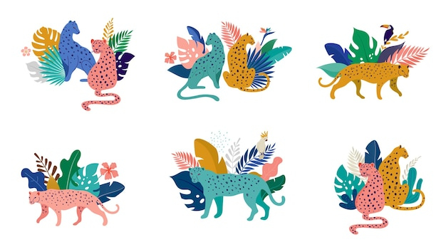 Tropikalne zwierzęta i ptaki egzotyczne