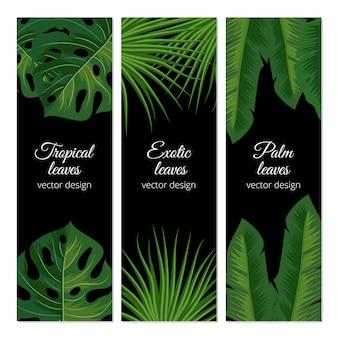 Tropikalni egzotyczni liście odizolowywający na białym tle
