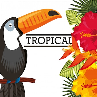 Tropikalny kwiat pozostawia karty zwierząt