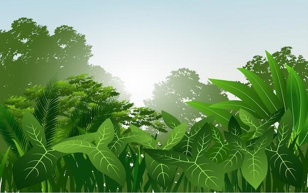 Tropikalny las deszczowy wektor z zielonymi liśćmi