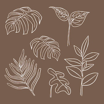 Tropikalny liść wektor doodle zestaw ilustracji botanicznych