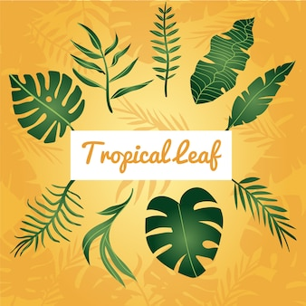 Tropikalny liść