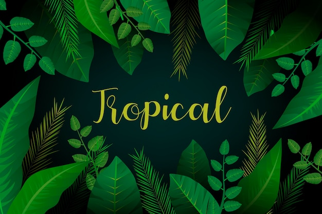 Tropikalny liścia tło z słowem tropikalnym