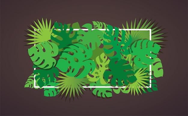 Tropikalny liście tło
