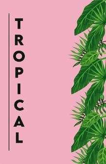 Tropikalny napis z ikoną
