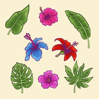 Tropikalny pakiet kwiatów i liści
