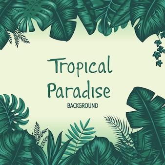 Tropikalny raj