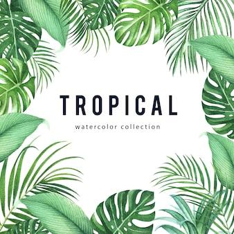 Tropikalny ramowy projekt z monstera liśćmi i palmowymi liśćmi, wektorowa ilustracja.
