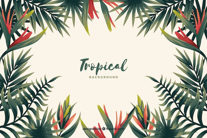 Tropikalny tło kwiaty