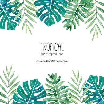 Tropikalny tło z liści w stylu przypominającym akwarele