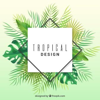 Tropikalny tło z liśćmi