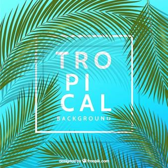 Tropikalny tło z realistycznymi roślinami