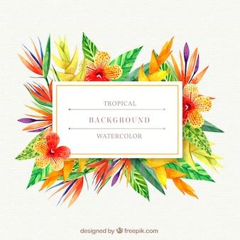 Tropikalny tło z roślinami ciepłych kolorów