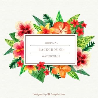 Tropikalny tło z roślinami czerwoni kolory
