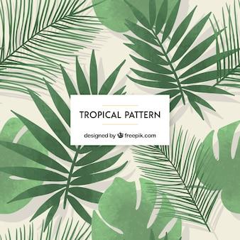 Tropikalny tło z roślinami