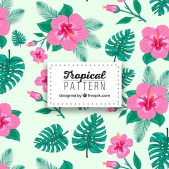 Tropikalny wzór z kwiatów i liści