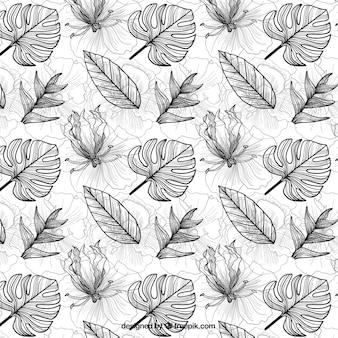 Tropikalny wzór z liści