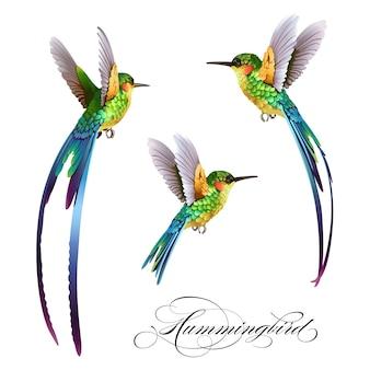 Tropikalny wzór z ptakiem