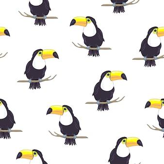Tropikalny wzór z tukany